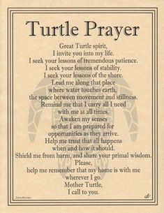 TURTLE PRAYER POSTER  A4 SIZE Wicca Pagan Witch Witchcraft Goth BOOK OF SHADOWS | Lots More..., Metaphysical, Wicca | eBay!