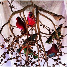 Lovebirds detail