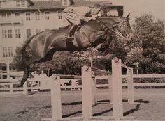 Cappy Smith winning a knockdown-all-out class on Margo at Pinehurst in 1948. Photo by John G. Hemmer