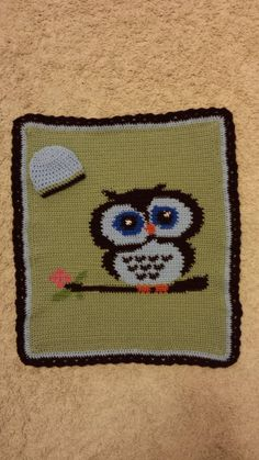 Owl Graphghan with matching hat