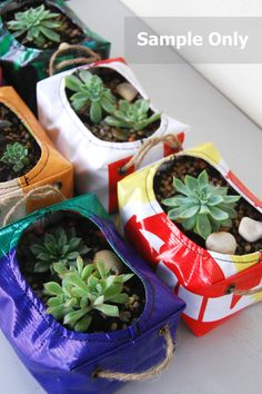 Recycling and reusing are green ways to help the planet. This article is dedicated to whimsical recycled plant containers that made from m. Recycled Planters, Recycled Garden, Diy Planters, Recycled Crafts, Garden Planters, Planter Ideas, Echeveria, Magic Garden, Container Plants