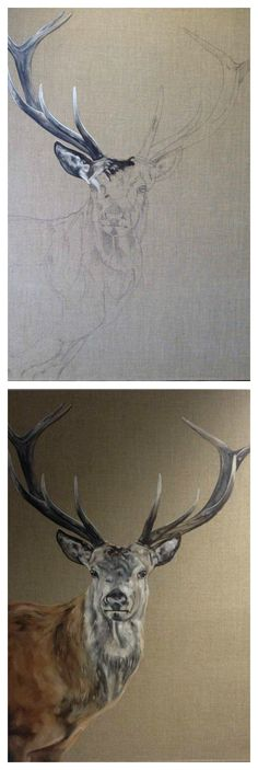 """How to paint a Red Deer Stag with Tony O'Connor 'The Stand' 30x40"""" oil on linen whitetreestudio.ie"""