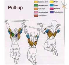 Max. Pull-ups in 3 minutes at http://www.konkura.com/challenge/?uid=620a3cf5-f76e-4cd6-bbcd-b298125d1068&t=Max+Pull-ups+in+3+minutes#details