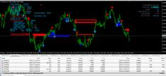 Professional forex trading group