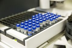 In an international study, Mayo Clinic researchers and collaborators have identified genetic markers that may help in identifying individuals who could benefit from the alcoholism treatment drug acamprosate.