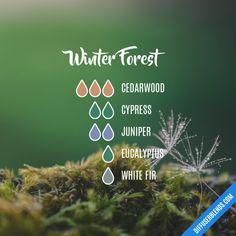 Blend recipe: 3 drops cedarwood, 2 drops cypress, 2 drops juniper, 1 drop eucalyptus, 1 drop white fir