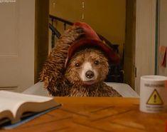 Is It Pronounced 'Gif' or 'Jif'? Teddy Bear Cartoon, Teddy Bears, Gif Or Jif, How To Pronounce Gif, Tiger Mask, British Things, Paddington Bear, Mickey Mouse And Friends, Bear Art