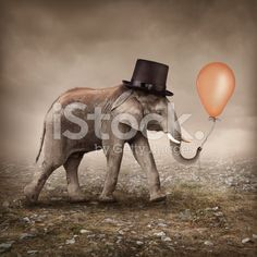 Elephant with a balloon royalty-free stock photo