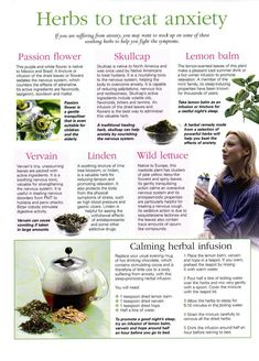 Herbs to Treat Anxiety / herbs / anxiety / natural medicine / herbology 101 Natural Health Remedies, Natural Cures, Natural Healing, Herbal Remedies, Healing Herbs, Medicinal Plants, Natural Medicine, Herbal Medicine, Homeopathic Medicine