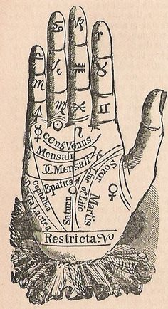 Palmistry #occult #palmistry #palmreading