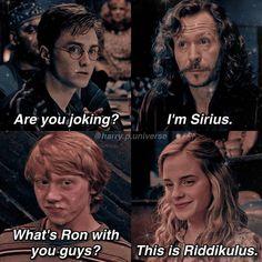Harry Potter Mems, Harry Potter Cast, Harry Potter Universal, Harry Potter Fandom, Harry Potter Characters, Harry Potter World, Harry Potter Funny Pictures, Harry Potter Pictures, Hogwarts
