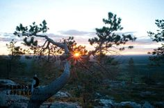 Käyrästunturi fell in Finnish Lapland. Photo by Jani Kärppä. #filmlapland #finlandlapland #arcticshooting
