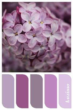 Lilac Hues, color palette created by Susan Tuttle