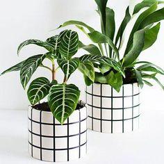 DIY Grid Planters : homey oh my Potted Plants, Indoor Plants, Plant Pots, Small Plants, Fleurs Diy, Decoration Plante, Diy Planters, Plant Decor, Houseplants