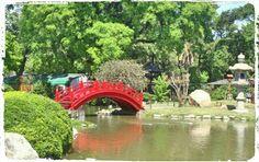 Jardín Japonés - Bs.As - Puente - Colores / CONTRASTES