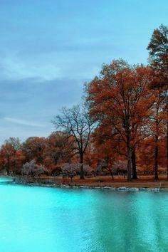 ✯ Autumn Park