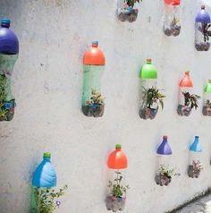 Soda Bottle Planters