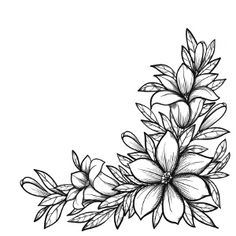 flower drawing Photos beautiful drawing images of flowers drawings art gallery jpg Pretty Flower Drawing, Realistic Flower Drawing, Flower Pattern Drawing, Vine Drawing, Beautiful Flower Drawings, Floral Drawing, Flower Patterns, Beautiful Flowers, Drawing Flowers
