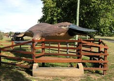 Latrobe Big Platypus
