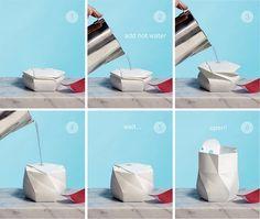 Eco-friendly ramen bowl pops up…literally