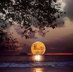 The moon, a candle in the sky...