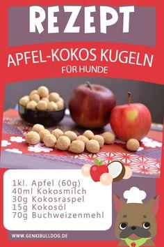 Rezept: Apfel-Kokos Kugeln für Hunde  www.genkibulldog.de