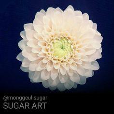 """좋아요 409개, 댓글 38개 - Instagram의 《몽글슈가》 슈가케이크 전국배송(@monggeul_sugar)님: """"#몽글슈가플라워 #sugarcraft #sugarflower #20140905 #sugardahlia #art #artist #sugarart #sugarartist…"""""""