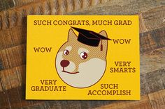 Funny Graduation Card Much Grad  Funny by TinyBeeCards on Etsy