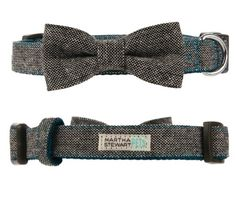 How fashionable is this #MarthaStewartPets blue and gray tweed collar from #PetSmart? Perfect for the upcoming holidays.