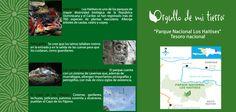Parque Nacional Los Haitises. Tesoro nacional.