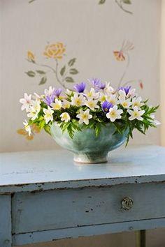 Gunnar Kaj - Image from the book 'Lat det blomma!' / 'Let there be flowers! Flower Bowl, My Flower, Flower Vases, Fresh Flowers, Beautiful Flowers, Nordic Interior Design, Still Life Flowers, Garden Maintenance, Flower Photos