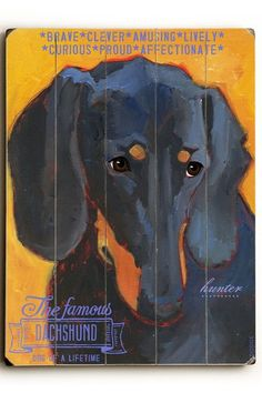 Dachshund by Pet Art Shop on @HauteLook