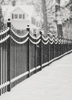 Lake Bluff Illinois, Iron Fence Covered With Snow Canvas Print / Canvas Art by… Winter Szenen, I Love Winter, Winter Magic, Winter Colors, Lake Bluff Illinois, Winter Wonderland, I Love Snow, Beaux Villages, Snowy Day