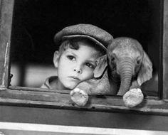 Baby Elefant mit Kind