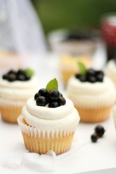 Cupcakes with Black Currants and Cream Baking Cupcakes, Cupcake Recipes, Cupcake Cakes, Food Collage, Mouth Watering Food, Black Currants, Mini Cakes, Amazing Cakes, Food And Drink