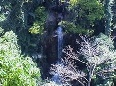 Tree tip cable tour Kho Sumai View of water fall from last platform