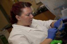 """""""Art and science are very closely related, and so the pigmented bacteria allow us to reach broader populations of people,"""" said Courtney Cain, a bachelor's degree biology student at the Clearwater Campus. #SPCollege"""