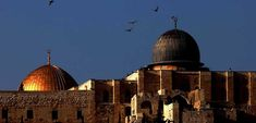 Masjdil Aqsha merupakan destinasi utama dari program Wisata Halal Bumi Para Nabi (BPN). Anda akan mendatangi 3 tujuan yaitu Mesir, Palestina dan Jordania. Perjalanan bumi semua Nabi akan berziarah ke beberapa makam para nabi. Dengan program ini Sahabat akan disuguhkan dengan sejumlah destinasi-destinasi yang unik dan paling tidak sedikit dikunjungi oleh wisatawan asing yang datang dari belahan dunia khususnya wisata ke masjid al Aqsa. Palestine, Taj Mahal, Islam, Tours, Building, Artwork, Travel, Work Of Art, Viajes