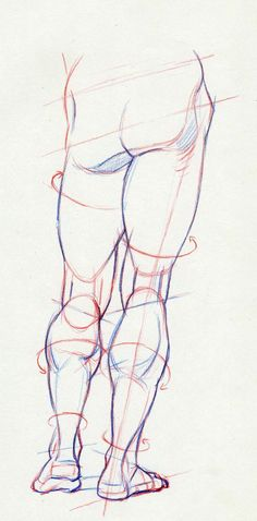 371 best figure drawing legs amp feet images on human Human Anatomy Drawing, Human Figure Drawing, Figure Drawing Reference, Gesture Drawing, Anatomy Reference, Pose Reference, Human Anatomy For Artists, Anatomy Sketches, Drawing Sketches
