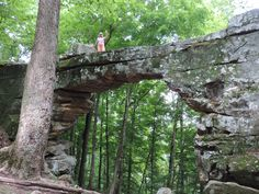 The Natural Bridge in Sewanee Is One Of Tennessee's Greatest Natural Geological Wonders