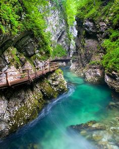 Vintgar Gorge, Slovenia -- 129 Places Worth Visiting Once in a Lifetime (part. Amazing Places On Earth, Oh The Places You'll Go, Places To Travel, Travel Destinations, Places To Visit, Travel Tips, Corfu Grecia, Dream Vacations, Vacation Spots