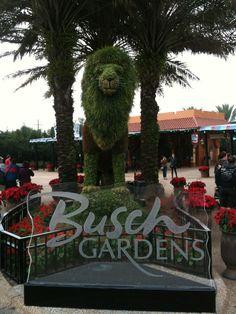 Favorite theme park
