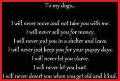 To my dogs...