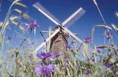 Windmuehle Destel (Foto: Mühlenverein Minden-Lübbecke e. Le Moulin, Windmills, Germany, France, Building, Travel, The World, Pictures, Hydroelectric Power