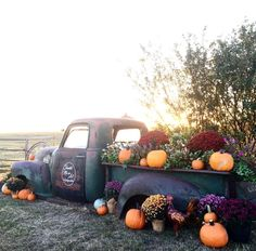 My old Vintage truck full of flowers and pumpkins Old Pickup Trucks, Farm Trucks, Chevy Trucks, Front Yard Decor, Flower Truck, Old Drawers, Autumn Display, Truck Art, Vintage Trucks