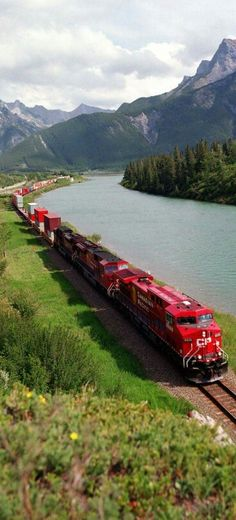Canadian Pacific Freight led by Engine #8528, Alberta, Canada