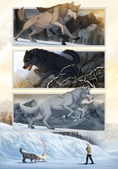 how to get a mate in wolfquest