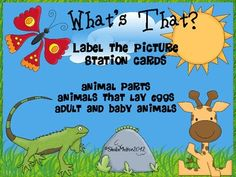 Kids love labeling pictures and it's a great skill for them to learn in not only reading and writing but other subjects as well. These cards ca...