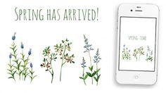 Free Spring 2013 watercolor wildflower wallpapers for Desktop, iPhone & iPad
