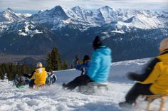 This week's winter-warmth tip is the sledging fun on the Niederhorn.